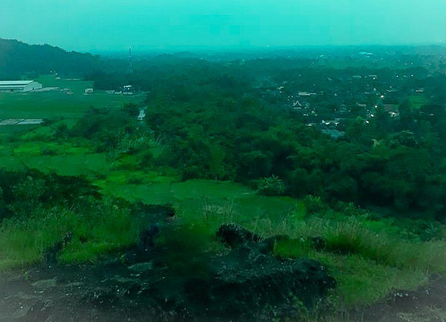 View Alam Homestay Jogja Omah Gunung